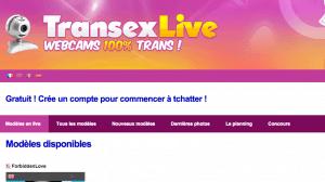 TranSexLive propose des webcam de trans et de shemales venus de France ou d'Asie du Sud Est.