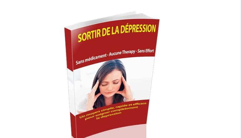 """Le livre """"Sortir de la dépression sans médicament"""" est accessible directement sur le site internet"""